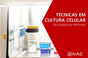 Técnicas em Cultura Celular